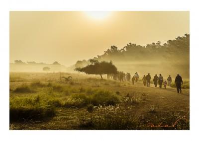 Kochikhali in early morning