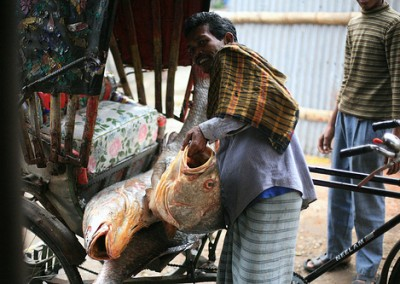Fish Market, Chittagong day tour