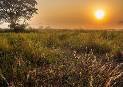 sunrises in kotka vally