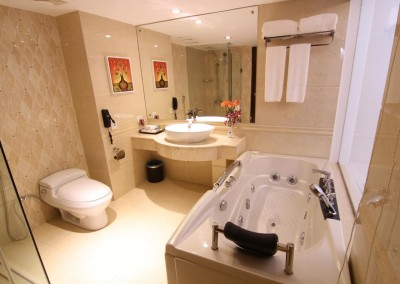 Hotel-bengal-blueberry Premium bathroom