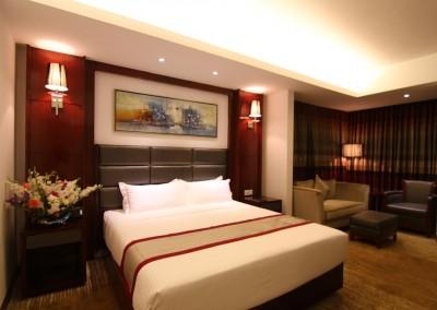 Hotel-bengal-blueberry premium room 1