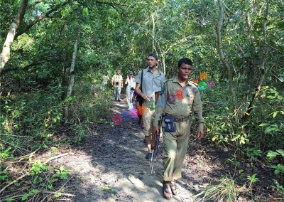 Jangule treaking-in Sundarban