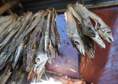 dry-fish-shop-in-coxs-bazar