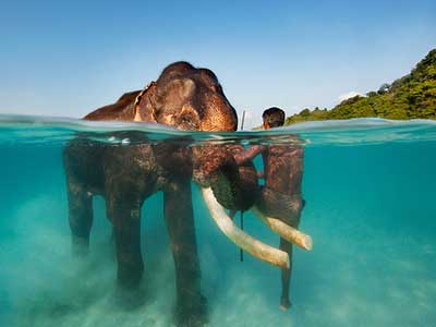 06 Days / 05 Nights: ANDAMAN TOUR PACKAGE